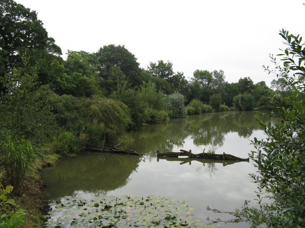 Glebe Pool 2