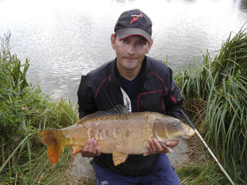 Glebe Pool 8 Mirror Carp